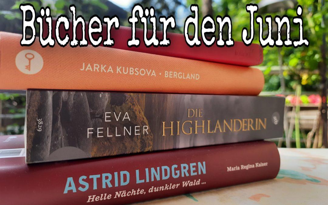 Der Sommer ist da {Bücher für den Juni}